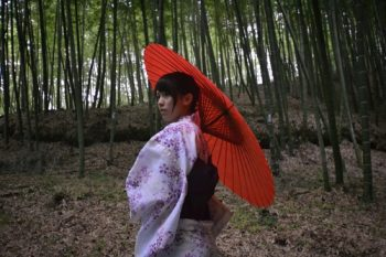 anewmoonovertohoku_about_redumbrella